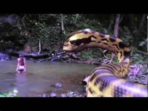 GIANT SNAKE EAT A YOUNG GIRL IN ONE SECOND