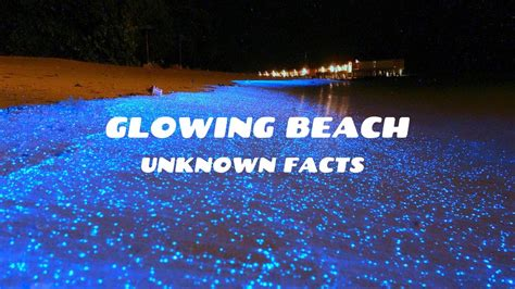 Glowing Beach  Vaadhoo island -Some unknown facts you