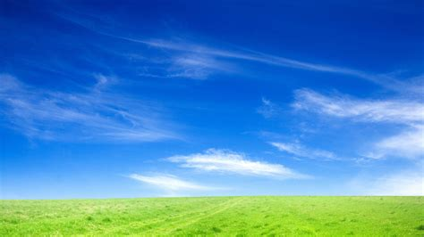 Blue Sky and Green Grass Wallpapers   HD Wallpapers   ID