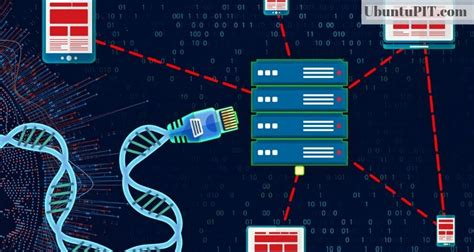 Top 20 Best Bioinformatics Tools for Linux: An Ultimate