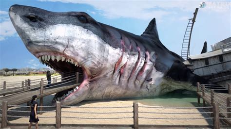 What Did Megalodon Eat? Megateeth