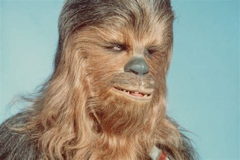 Man dressed as Chewbacca 'attacked resort worker with